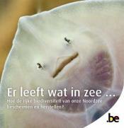 Brochure La mer regorge de vie
